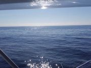 Tuna Duck Sportfishing, Beautiful Day in the Gulf Stream