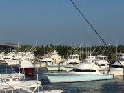 Pirate's Cove Marina, Thursday's Catch!