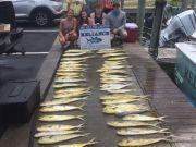 Reliance Hatteras Fishing Charters, Reliance mahi action.