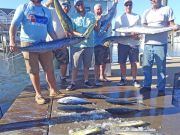 Tuna Duck Sportfishing, Mahi and Wahoo