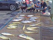Tuna Duck Sportfishing, Mahi and Tuna
