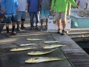 Bite Me Sportfishing Charters, Couldn't Hang on to Them!