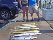 Tuna Duck Sportfishing, Mahi, Kings, and Barracuda