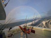 Tuna Duck Sportfishing, Jack and Mahi