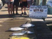 Bite Me Sportfishing Charters, Tuna and Dolphin