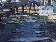 Bite Me Sportfishing Charters, Pretty Weather Great Fishing