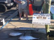 Bite Me Sportfishing Charters, Tuna, Wahoo and  king