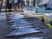 Bite Me Sportfishing Charters, Lotsa Wahoo