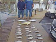Tuna Duck Sportfishing, Peaceful Day