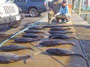 Tuna Duck Sportfishing, Spring Time!