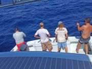 Tuna Duck Sportfishing, Vertical Jigging