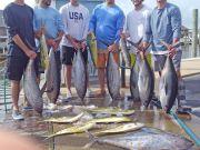 Tuna Duck Sportfishing, Yellowfin Tuna