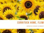 Currituck County Department of Travel & Tourism, Currituck Home, Flower & Garden Show