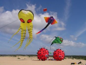 Kitty Hawk Kites, 38th Annual Rogallo Kite Festival