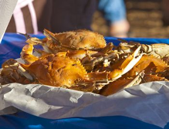 Outer Banks Seafood Festival, Outer Banks Seafood Festival