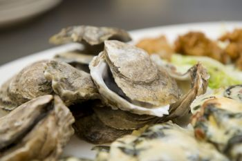 Lucky 12 Tavern, All About Oysters - Taste of the Beach