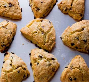 Outer Banks Coffee Company, Homemade Scones