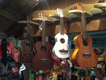 Ride The Wind Surf Shop, Kala Ukuleles
