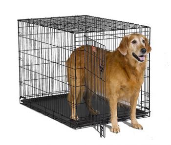 Ocean Atlantic Rentals, Dog Crate