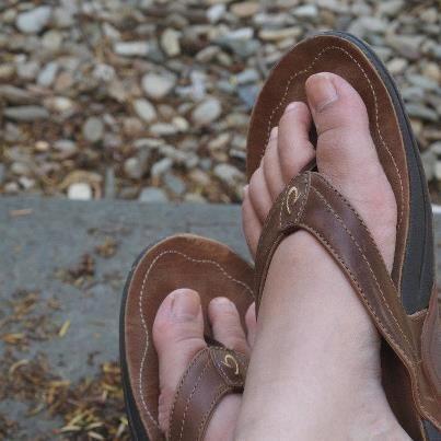 052c4994da4 Flip Flop Shops photo