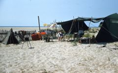 Cape Hatteras Anglers Club photo