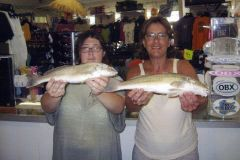 TW's Bait & Tackle photo