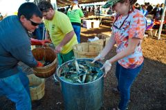 Outer Banks Seafood Festival photo