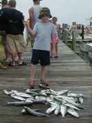 Risky Business Sportfishing Charters photo