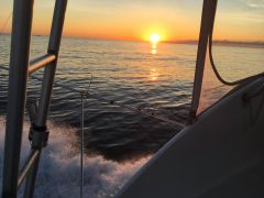 Carolina Girl Sportfishing Charters Outer Banks photo