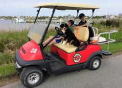 Ocracoke Island Golf Carts photo