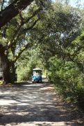 Wheelie Fun Cart Rentals photo