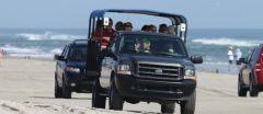 Corolla wild horse tour