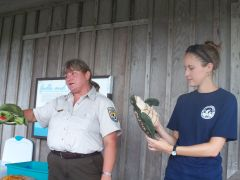 Turtle Talk at Alligator River National Wildlife Refuge