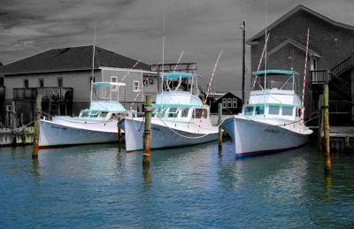 Albatross Fleet photo