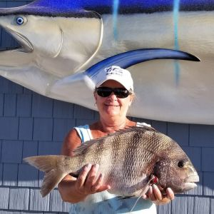 Oceans East Bait & Tackle Nags Head photo