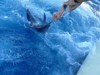 Fishin' Fannatic photo