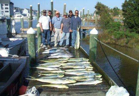 A-Salt Weapon Charters, Yellowfin Tuna, Blue Marlin and Dolphin
