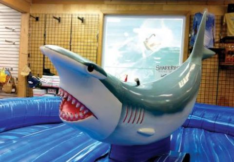 Kitty Hawk Surf Co., Ride the Shark!