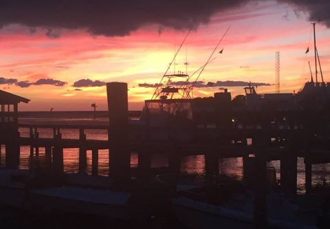 Fish Ocracoke, Sunset Cruise & Fishing Charter