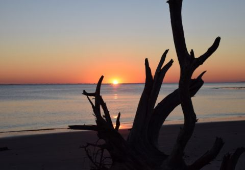 Bianca's Outer Banks Psychic Readings, Feng Shui at the Beach