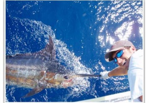 Bite Me Sportfishing Charters, Offshore Fishing with Bite Me Sportfishing