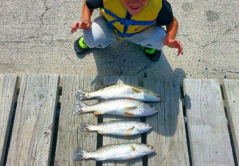 Wanchese Marina, Inshore Charter Fishing