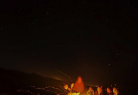 Hatteras Island Ocean Center, Campfires, Crabs & Constellations