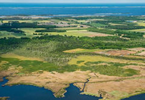 Corolla Outer Banks Visitor Center, Explore a County Park