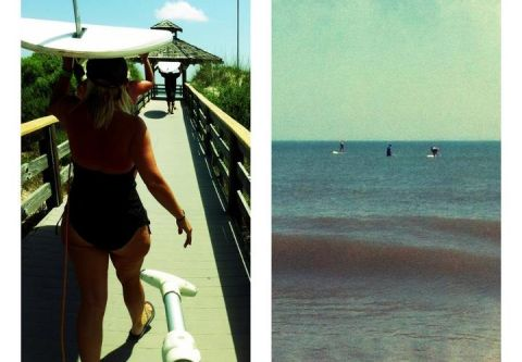 Island Revolution Surf Company and Skatepark, Stand Up Paddleboard Tours & Lessons