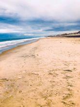 Beach and Ocean with Cloudy Sky