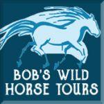 Bob's Wild Horse Tours