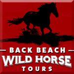 Back Beach Wild Horse Tours