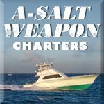 A-Salt Weapon