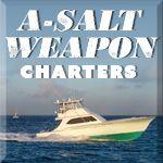 A-Salt Weapon
